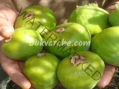 Народни рецепти със смокини за лечение на различни заболявания