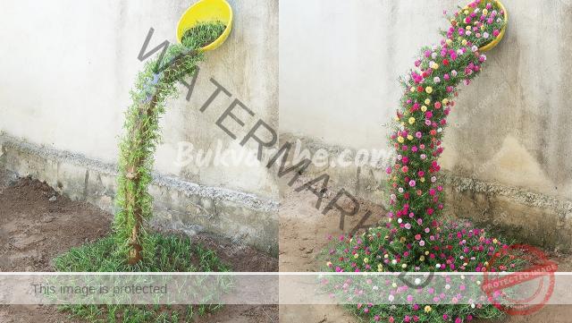 Креативна идея за градината - водопад от красиви цветя