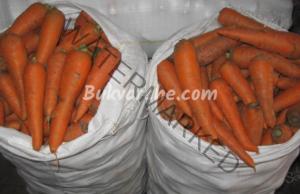 Как се съхраняват морковите през зимата?