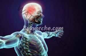 Упражнения за мозъка, които подобряват работата му